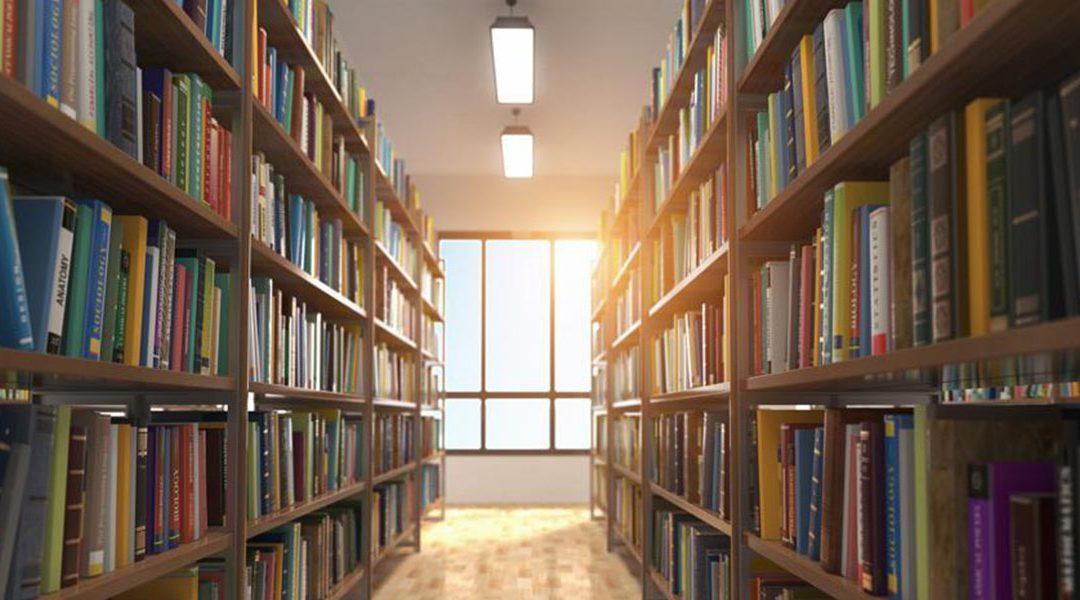 Planejamento e gestão de bibliotecas: Como colocar em prática na gestão pública?